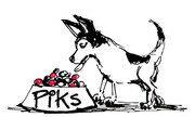 PIKS & SKIP illustrations